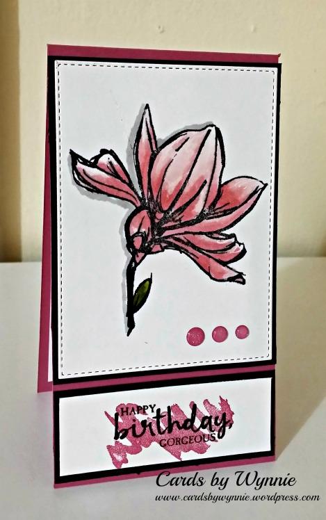 magnolia w